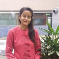 Ms Anju Pathania SEO Head